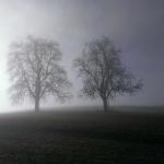 Nebel überm Jagsttal I