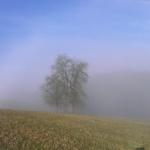 Nebel überm Jagsttal II